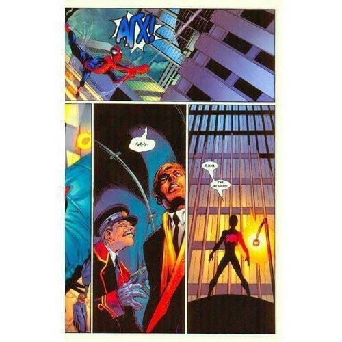 Книга комиксов. Человек-Паук. Том 8. Черная кошка (фото, вид 2)