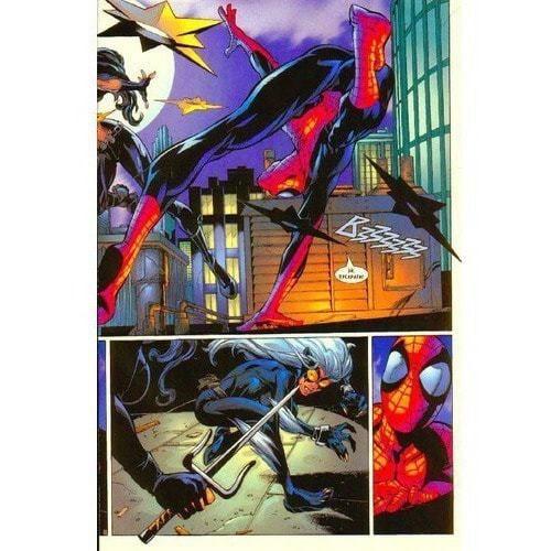 Книга комиксов. Человек-Паук. Том 8. Черная кошка (фото, вид 3)