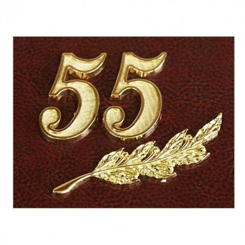 Папка юбилейная с адресом. 55 лет (фото, вид 3)