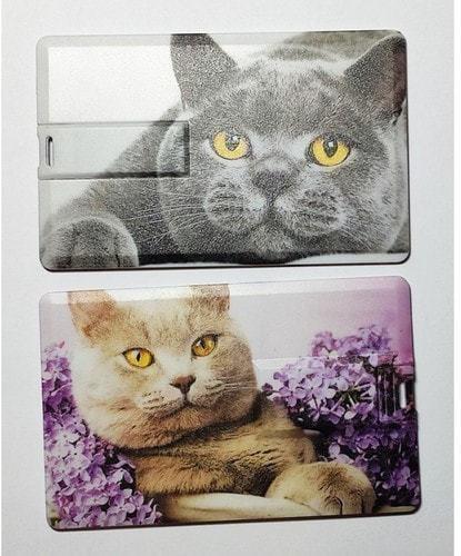Подарочная флешка. Кошки (фото, вид 1)