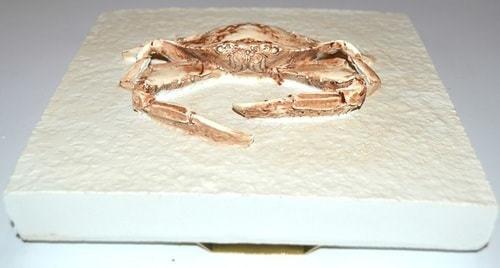 Подарочный набор из 3-х настенных панно. Морские обитатели (фото, вид 4)