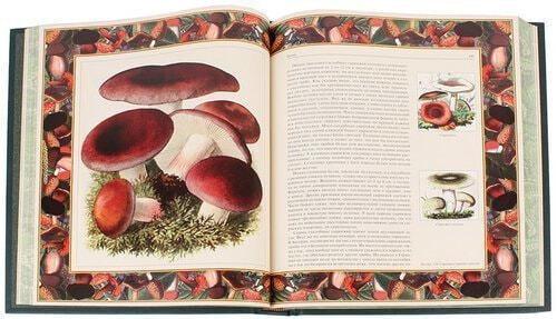 Книга в кожаном переплете и подарочном коробе. Русский лес. Грибы и ягоды (фото, вид 2)