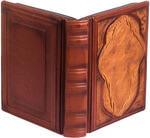 Подарочная книга в кожаном переплете. Библия. Иллюстрированный Новый Завет. Вид 2