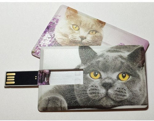 Подарочная флешка. Кошки (фото)