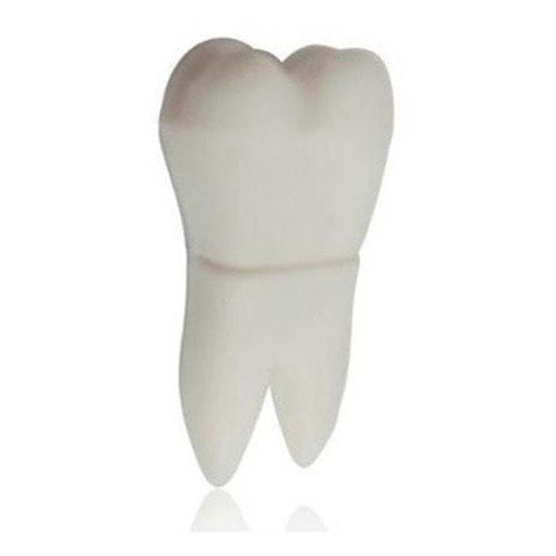 Подарочная флешка. Зуб (фото)