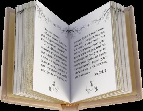 Миниатюрная книга в кожаном переплете. Изречения Конфуция. Лао-Цзы. в 2-х книгах (в коробе) (фото, вид 4)