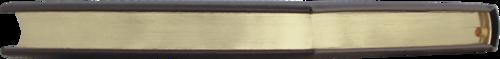 Подарочная книга в кожаном переплете. Санкт-Петербург (на русском языке) (фото, вид 2)