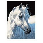 Раскрашивание по холсту. Размер холста 30*40 см. Белая лошадь