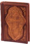 Подарочная книга в кожаном переплете. Библия. Иллюстрированный Новый Завет