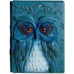 Подарочный блокнот. Дневник совы 3D (Эффектная трехмерная обложка)