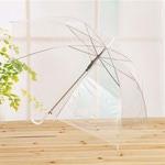 Зонт-трость Прозрачный купол. Цвет белый